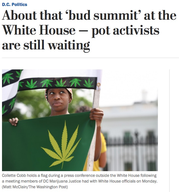 Screengrab of the Washington Post story About that 'bud summit' at the White House — pot activists are still waiting