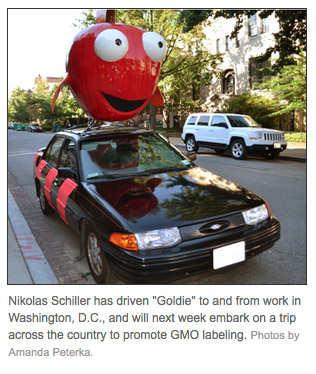 DCist: For Sale: One Car And Its 250-Pound Ear Of 'Fishy Corn'