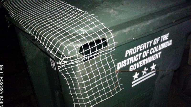 Photograph of a gnawed hole in my trashcan with the chicken wire cage