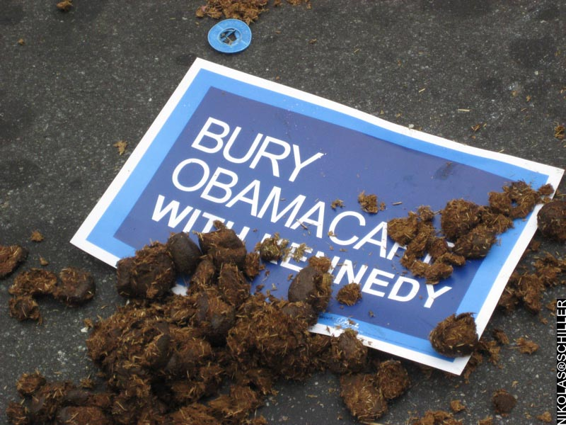 A sign that says Bury Obamacare with Ted Kennedy covered in horse poop