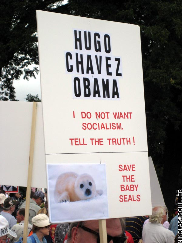 Photograph of a sign that says: HUGO CHAVEZ OBAMA -  I do not want socialism.  Tell the Truth! --- Save the baby seals