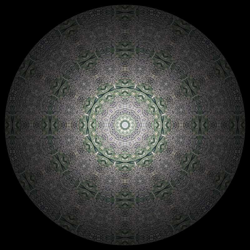 Adams Morgan Mandala by Nikolas Schiller